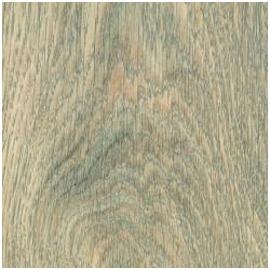 A01 Albany Oak