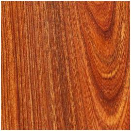 D01 Oiled Elm